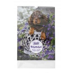 T-Calendar spirálos fali naptár 23x33 cm, 2021 kölyökkutyák